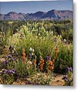 Desert Wildflowers Metal Print