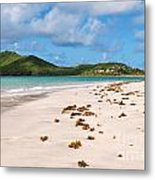 Deserted Beach At Vieux Fort Metal Print
