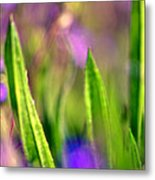 Disco Grass Metal Print