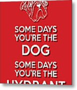 Dog Or Hydrant Red Metal Print