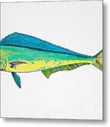 Dolphin Fish Metal Print