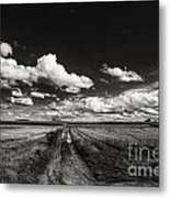 Drifting Clouds Metal Print