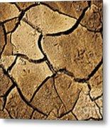 Dry Land Metal Print