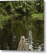 Dugout Canoe In Blackwater Stream Metal Print