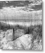 Dune Fences Metal Print
