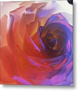 Electric Rose  Metal Print by Etti PALITZ