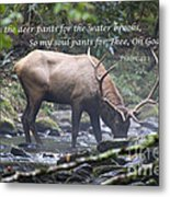 Elk Drinking Water From A Stream Metal Print