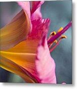 Enchanting Florals Metal Print