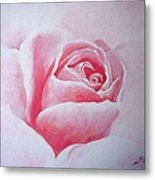 English Rose Metal Print