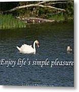 Enjoy Lifes Simple Pleasures Metal Print
