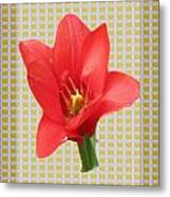 Exotic Red Tulip In Bold And Two Border Patterns Tiny Sparkle Parallal Horizontal Strips Summer Flow Metal Print