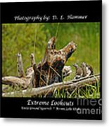 Extreme Lookouts Metal Print