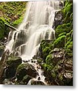 Fairy Falls In The Columbia River Gorge Area Of Oregon Metal Print