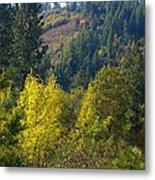 Fall In Spokane Metal Print
