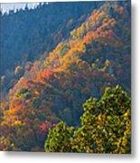 Fall Smoky Mountains Metal Print