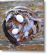1. Feather wreath EXAMPLE Metal Print