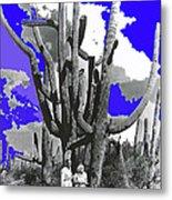 Film Homage Victor Fleming Jean Harlow Bombshell 1933 Saguaro Nat'l Monument Tucson 2008 Metal Print