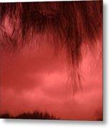 Film Noir Homage Blood Simple 1984 Hanging Tree Branches Casa Grande Arizona 2005 Metal Print