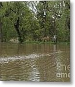 Flooded Park Metal Print