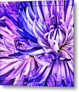 Flower Closeup Metal Print