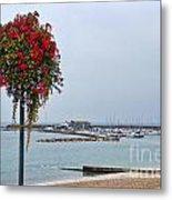 Flowers Along The Seafront Metal Print