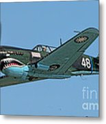 Flying Tiger Metal Print