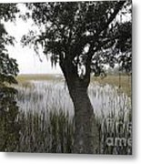 Fog On The Water Metal Print