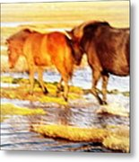 Our Whole Life We Just Follow The Stream  Metal Print