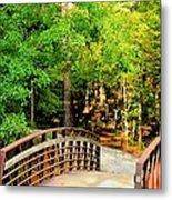 Folsom Bridge At Furnace Creek Metal Print