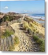 Footpath On The Atlantic Dune In Brittany Metal Print