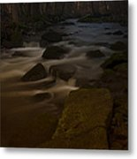 Forest Creek Metal Print