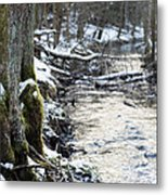 Forest Lights Metal Print