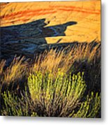 Fossil Beds And Grass Metal Print
