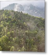 Franconia Notch State Park - White Mountains Nh Usa Metal Print