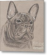 French Bulldog - Snickers Metal Print