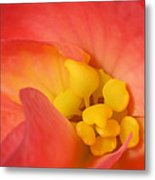 From The Heart Metal Print