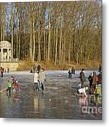 Frozen Lake Krefeld Germany. Metal Print by David Davies