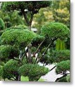 Garden Landscape - Topiary Metal Print