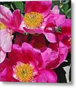 Garden Party Metal Print by Billie Colson