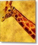 Giraffe Painting Metal Print by Dan Sproul