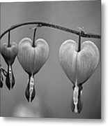 God's Perfect Heart Metal Print
