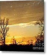 Golden Sunset 61 Metal Print