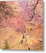 Grand Canyon 33 Metal Print