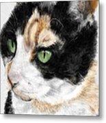 Green Eyed Cat Metal Print
