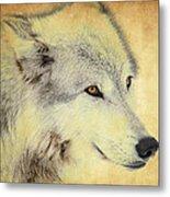 Grey Wolf Art Metal Print