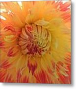 Here And Now Metal Print