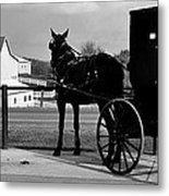 Horse And Buggy And Farm Metal Print