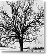 Horse Farm In Winter Metal Print