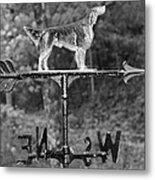 Hound Dog Weather Vane Metal Print
