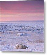 Hudson Bay Landscape Metal Print